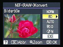Nikon D60 RAW-Edit [Foto: MediaNord]