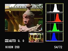 Nikon D90 – lokales Histogramm [Foto: Yvan Boeres]