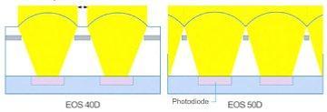 Canon EOS 50D – Mikrolinsen [Foto: Canon]