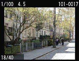 Canon EOS 550D – Bildwiedergabe [Foto: MediaNord]