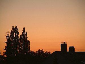 Gegenlicht gezielt eingesetzt erzeugt eine romantische Abendstimmung [Foto: MediaNord]