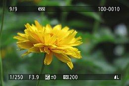 Canon PowerShot G1X Mark II – Bildwiedergabe [Foto: Martin Vieten]