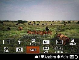 Sony Alpha 7 – Schnellmenü [Foto: Martin Vieten]