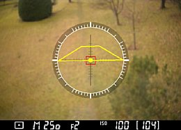 Nikon Df – Live-View mit Ausrichthilfe [Foto: Martin Vieten]