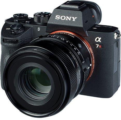 Bild An der Sony Alpha 7R III sieht das Sigma 65 mm F2 DG DN Contemporary ziemlich schick aus, ist aber an der kompakten Vollformatkamera schon etwas kopflastig. [Foto: MediaNord]