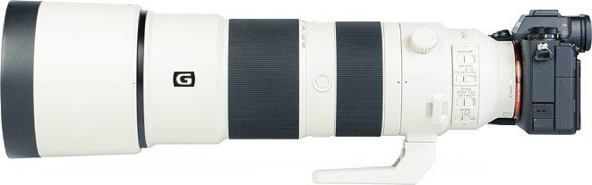 Bild Mit angesetzter Streulichtblende, die beim Sony mit FE 200-600 mm F5.6-6.3 G OSS (SEL200600G) zum Lieferumfang gehört, sieht das ohnehin lange Objektiv nochmal länger aus. [Foto: MediaNord]