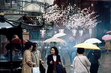 Bild Frühlingsregen in Tokio [Foto: Jürgen Rauteberg]