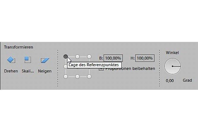 Bild In der Optionsleiste des Verschieben-Werkzeugs legen Sie die Verkleinerung des Fotos als Zahlenwert fest. [Foto: Markt+Technik]