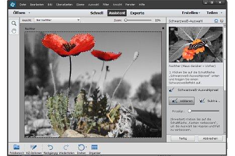 """Bild Bei der neuen """"Schwarzweiß-Auswahl"""" werden Bildbereiche festgelegt, die in Graustufen oder in Farbe erscheinen sollen. [Foto: Heico Neumeyer]"""
