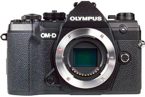 Bild Der kleine Micro-Four-Thirds-Sensor der Olympus OM-D E-M5 Mark III löst 20 Megapixel auf und liefert eine erstaunlich gute Bildqualität bis ISO 800, aber auch bei ISO 3.200 braucht er sich nicht zu verstecken. [Foto: MediaNord]