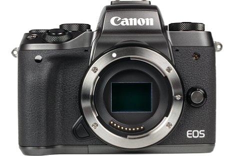 Bild 24 Megapixel löst der APS-C-Sensor (Copfaktor 1,6) der Canon EOS M5 auf. Für die Fokussierung steht der Dual-Pixel-AF zur Verfügung, der die Pixel zur Phasenmessung in zwei Hälften teilt. [Foto: MediaNord]