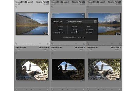 Bild Neu auch bei der Bildverwaltung: Die Sprühdose öffnet auf Wunsch ein Kontextmenü, aus dem sich schnell die zuletzt verwendeten Stichworte auswählen lassen. [Foto: Martin Vieten]