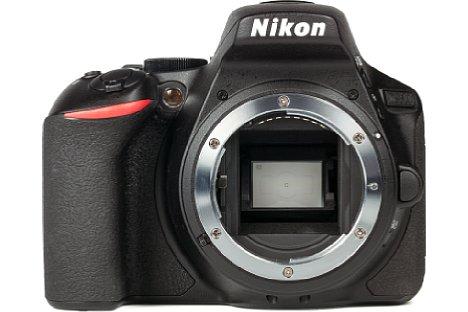 Bild Der APS-C große Bildsensor der Nikon D5600 liefert mit seinen 24 Megapixeln Auflösungbis ISO 1.600 eine sehr gute Bildqualität. [Foto: MediaNord]