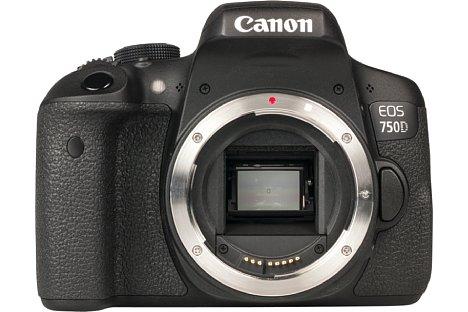 Bild Der APS-C-Sensor der Canon EOS 750D und 760D ist neu: Er löst nun 24 Megapixel auf und bietet Phasen-Autofokus-Sensor, die dem Live-View-Autofokus ordentlich auf die Sprünge helfen. [Foto: MediaNord]