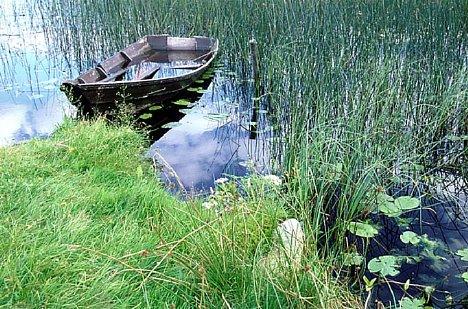Bild Die Gräser im Vordergrund scheinen größer als der Kahn; die Darstellung wirkt stark plastisch [Foto: Jürgen Rauteberg]