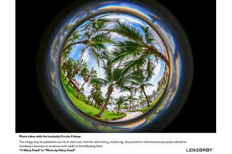 Bild Der kugelige Look des Lensbaby 5,8 mm 185° Circular Fisheye kann extrem kreativ eingesetzt werden. [Foto: Lensbaby]