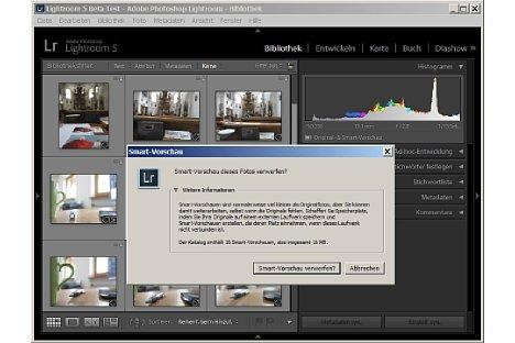 Bild Direkt unter dem Histogramm meldet Lightroom, ob für die aktivierten Bilder Smart-Vorschauen existieren. [Foto: Heico Neumeyer]