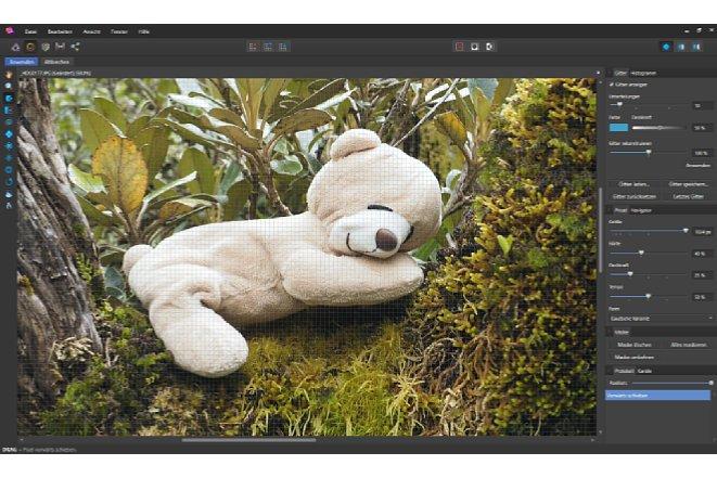 Bild In der Liquify-Persona wird das Bild mit einem Raster belegt und kann kann verändert werden. Dieses Raster kann zudem exportiert werden, um es auf andere Bilder zu legen. [Foto: MediaNord]