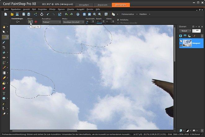 """Bild Nach dem Klick auf """"Magic Fill"""" hat PaintShop Pro die Tauben spurenlos entfernt. [Foto: Heico Neumeyer]"""